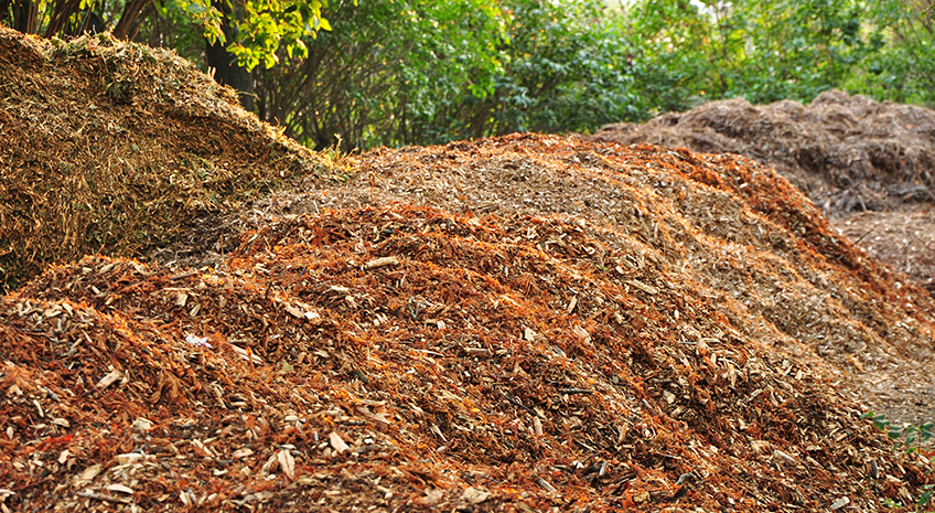 Earth Day Fun - DIY Organic Mulching