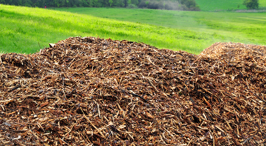 Where Does My Food Comes From Series: Types of Organic Mulch